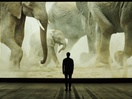 New WWF & Will Young Promo Features Stunning Scenes of Nature