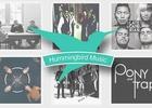 Friday Tunes: Hummingbird's Musical Flutter