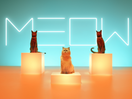 The Meow Mix Jingle Has Been Remixed by Sassy Felines Singing Soulful R&B