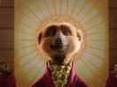 Meerkats Bend Over Backwards to Make Health Reforms Easier to Grasp