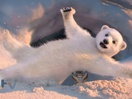 Stuart Hancock Composes Music for ITV's Dancing On Ice Bear to Figure Skate to