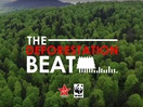 Famous Romanian Artists Remixed their Songs to the Beat of Deforestation