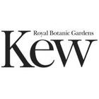 Charity Kew Foundation Appoints McCann London