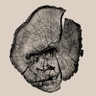 Animal Drawings Are Embossed in Tree Trunks in These Deforestation Awareness Prints