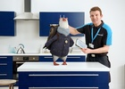 Filament Post Helps 'Wilbur' Deliver Free Electricity from British Gas