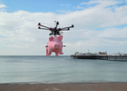 Making pigs fly
