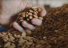 Daft Punk-Inspired Spot Shows How Almonds Are the 'Milk of the Land'