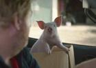 Vodafone & FCB New Zealand Introduce Piggy-Sue