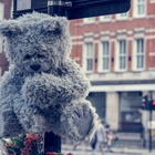 Meet Toxic Toby: London's Roadside Memorial Highlighting Deaths Caused by Air Pollution