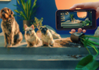 Smart Home Brand Imagines What Home Could Be in Campaign from FCB/Six