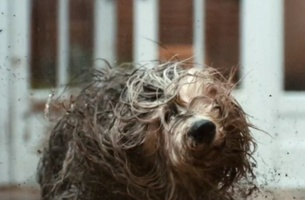 Dulux Makes a Splash with Latest Messy Spot from BBH London