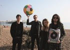 Stripey Horse Goes On the Road with Wolf Alice