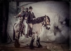 Giffords Circus Photography
