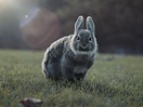 Adorable Animals Quote Famous Movies in Spot for Sky New Zealand
