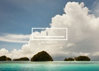 Host/Havas Sydney Takes Out Care Awards Grand Prix for Palau Legacy Project 'Palau Pledge'