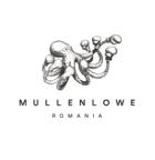 MullenLowe Romania
