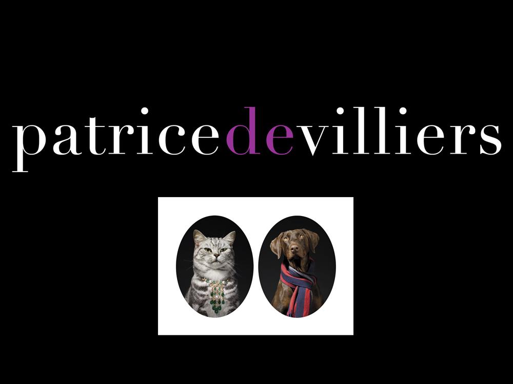 Patrice De Villiers
