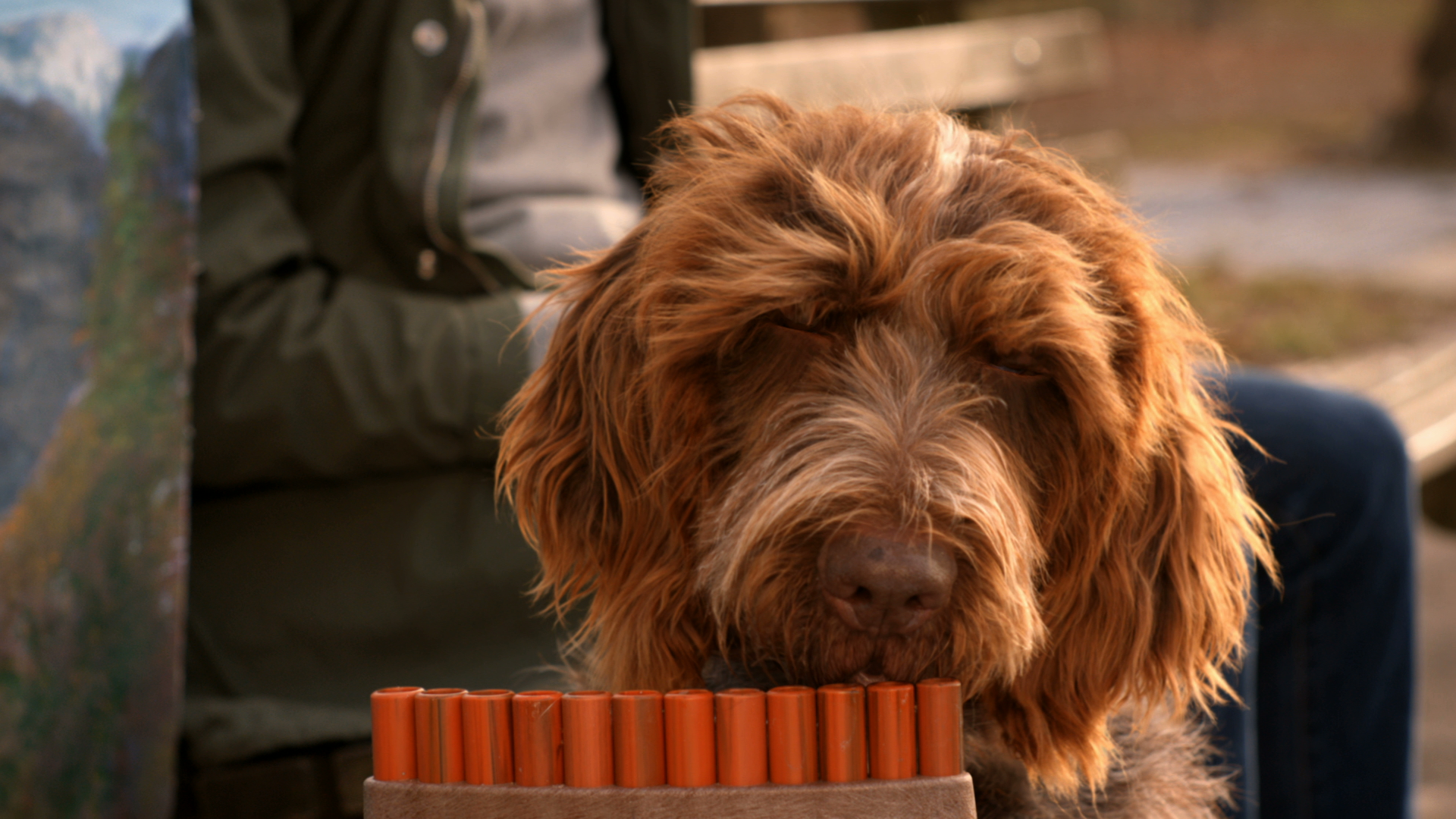 The Play Room's Adam Spivey Cuts MARS' Brilliant Pan Pipe Pooch Spot