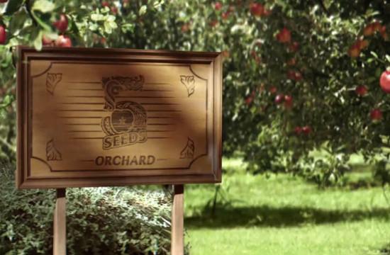 Take a Peek Inside 5 Seeds' Orchard