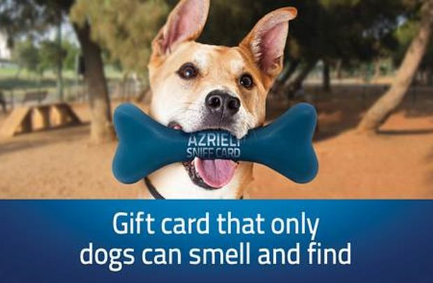 These Gift Card Bones Can Only Be Found by Dogs