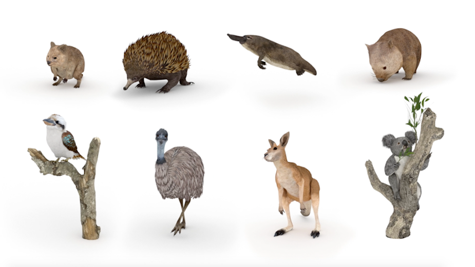 Google Lets You Get up Close and Personal with Australian Animals in New Film from Emotive