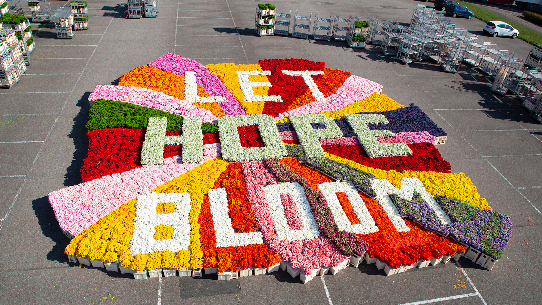Flower Council of Holland Sends Global Messages of Hope
