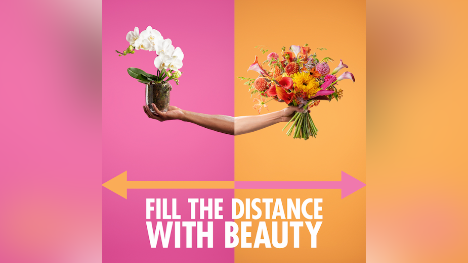 The Flower Council of Holland Fills Distance with Beauty
