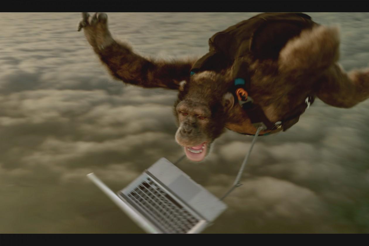 Bingle Unveils 'As Simple As It Sounds' Campaign via The Monkeys