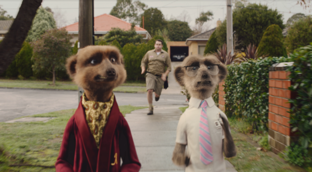 Meerkat Not Possum in Compare the Market's New Spot by VCCP Sydney