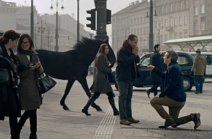 Paul Watts Cuts Tender Moments for Lloyds and Adam&Eve DDB