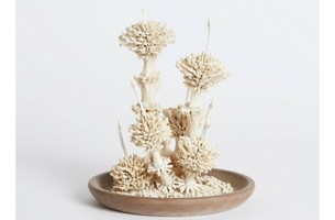 Curious Productions and Sculptor Emma Witter Unite in New Exhibition 'BLOOM'