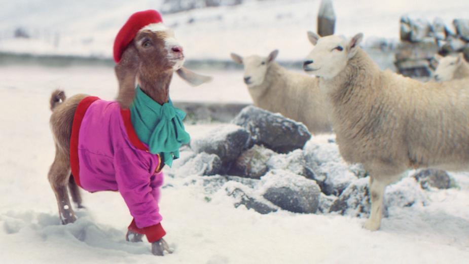 TK Maxx's Charming Spot Sees Lil' Goat Struts Her Stuff in the Snow