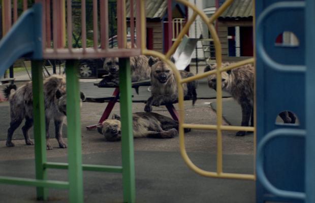 Your Shot: Barnardo's Heads Off a Cruel Cackle of Hyenas