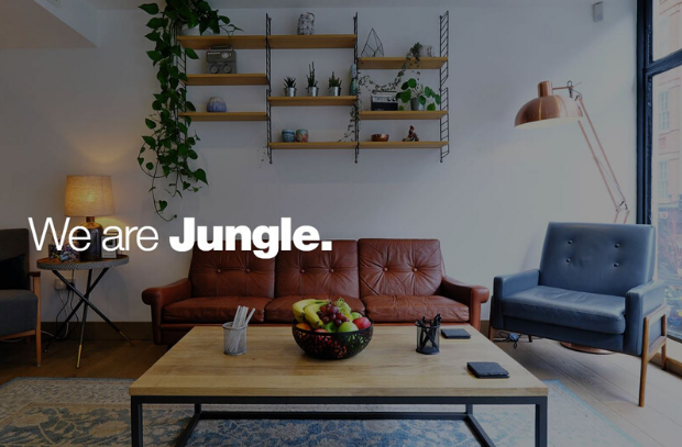 Jungle Studios: Celebrating A Quarter of A Century