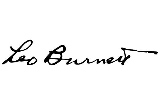 Leo Burnett Network Of The Year