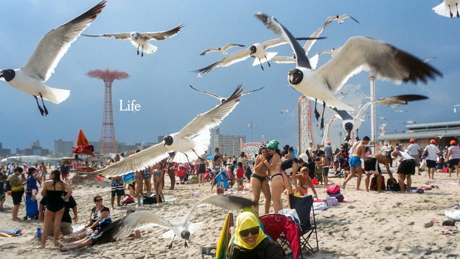 Life Needs Truth: Kim Gehrig Helms Brilliant, Chaotic NY Times Ad via Droga5
