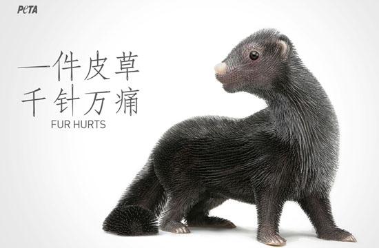 O&M Beijing for PETA