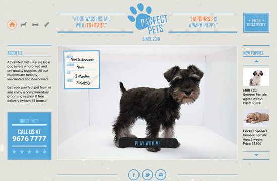 PawfectPets Reveals the True Cost of Puppy Purchasing