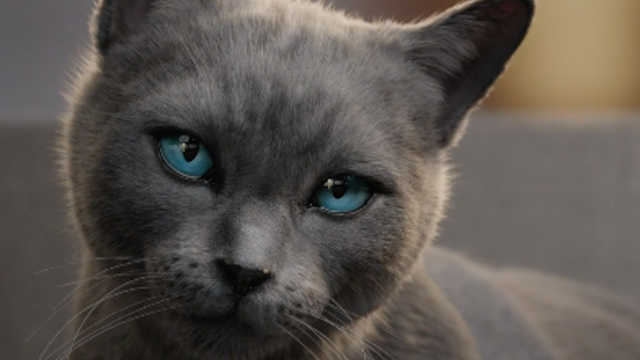 SHEBA Teaches Pet Owners the Art of the Cat Kiss in Cute Social Campaign