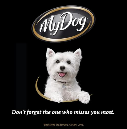 My Dog Says Don't Forget the One Who Misses You the Most
