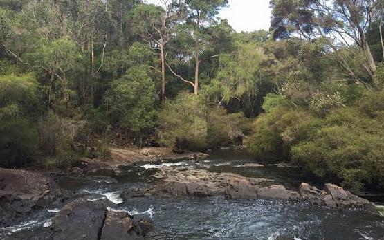 Cummins&Partners Creates Live Stream Stream With Tourism Western Australia