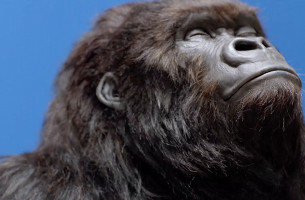 We're Pretty Sure We've Seen the Gorilla in This New Aldi Ad Before