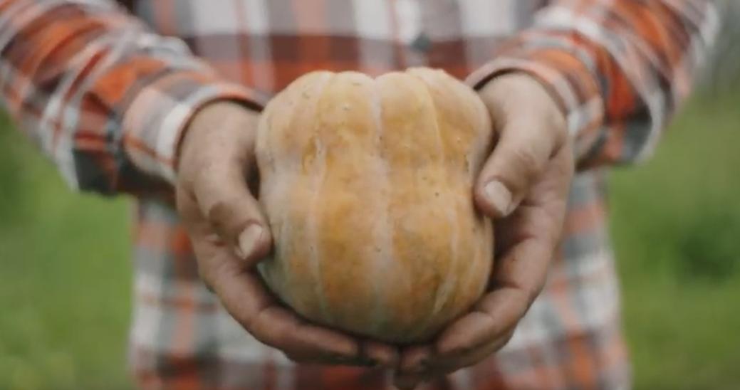 Mini-Docs Showcase Sweetgreen's Partnership with Blue Hill Chef Dan Barber