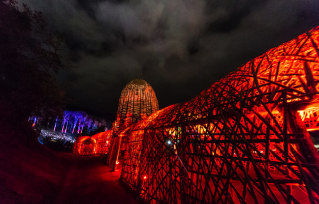 OMD Enters The Hothouse at Dark Mofo - the Museum of Old and New Art
