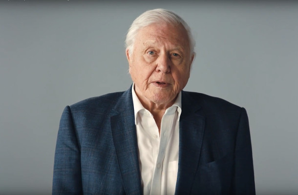 Sir David Attenborough Becomes the Voice of Millions at Critical UN Climate Talks