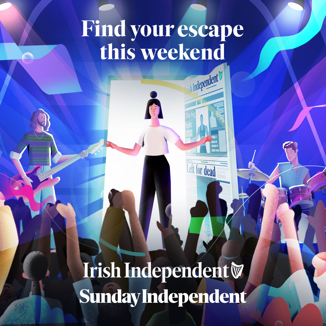 Jelly's Aniverse Provides Weekend Escapism for Irish Independent