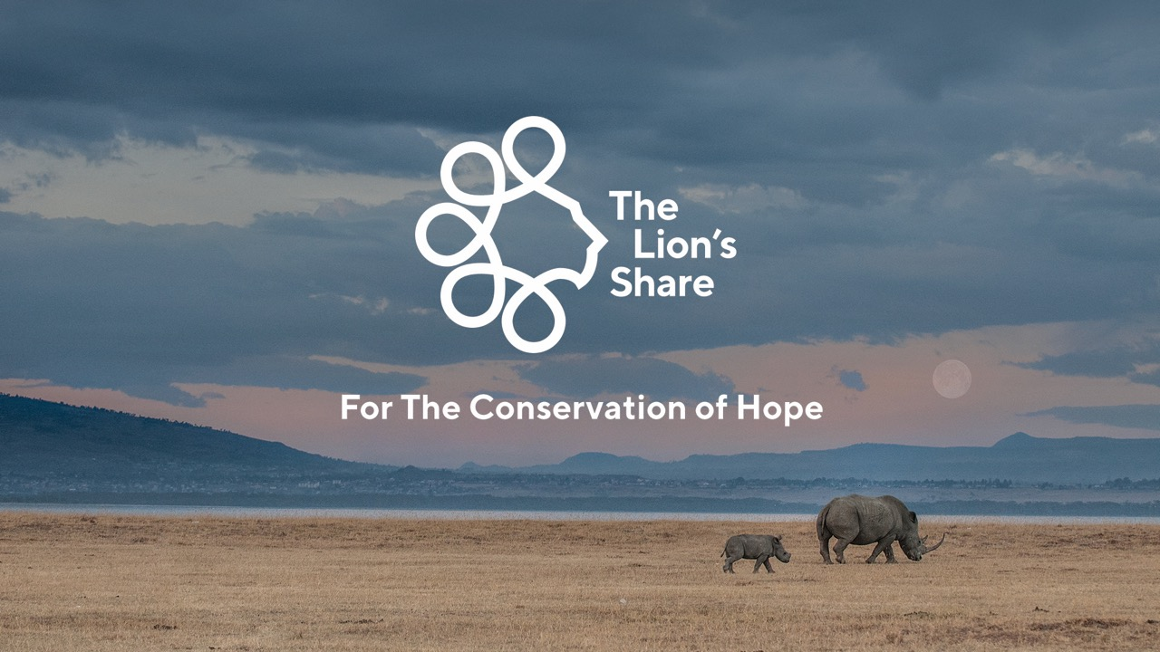 Cannes Grand Prix Winning Initiative 'The Lion's Share' Explored at the 74th United Nations General Assembly in New York