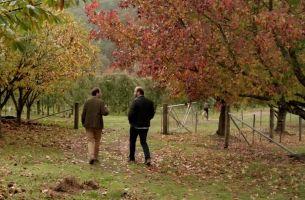 Clemenger BBDO Invites Melburnians to 'Wander Victoria'