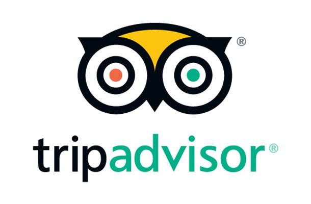 TripAdvisor Appoints Havas Media as Global Agency of Record