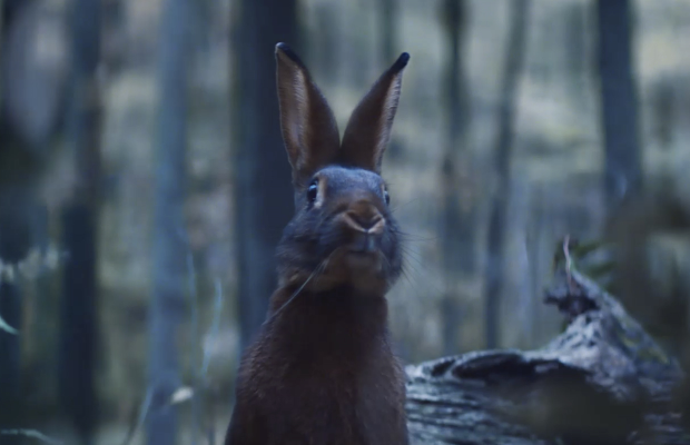 New York Lottery Enlists Woodland Friends to Help Celebrate the Magic of Christmas